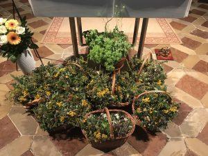 Auch heuer wurden wieder Kräuterbüschen liebevoll gebunden und an die Besucher der Stadtpfarre Wels verteilt; Kräuterbuschenweihe 15.08.2020